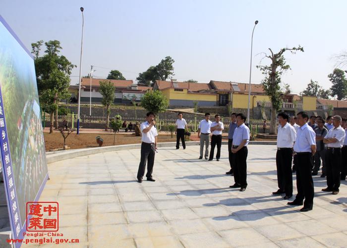 市领导视察美丽乡村创建工作