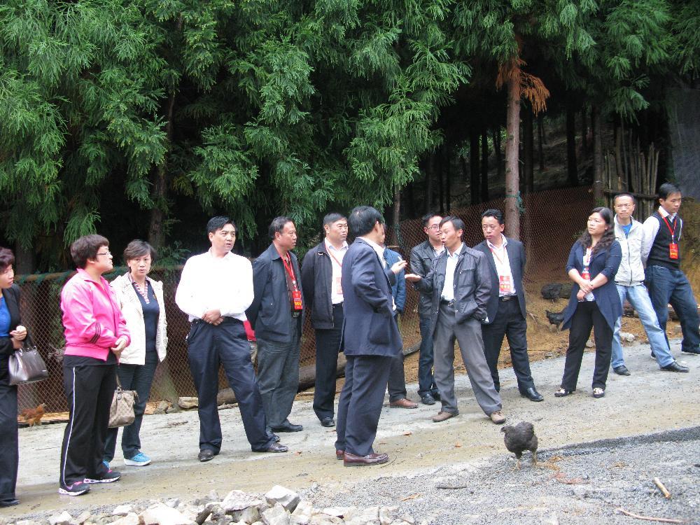 9月3日,省市政协委员调研大方扶贫攻坚工作推进情况。