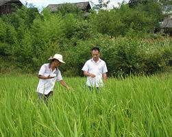 我局信访督查员带队到帮扶村开展抗旱指导工作