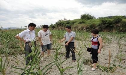 县科协领导到党建帮扶村开展抗旱救灾工作