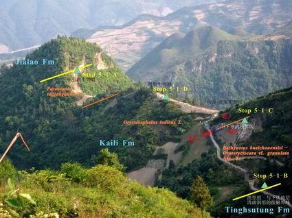 八郎曾家崖-乌溜坡剖面化石带、2.3统分界线示意