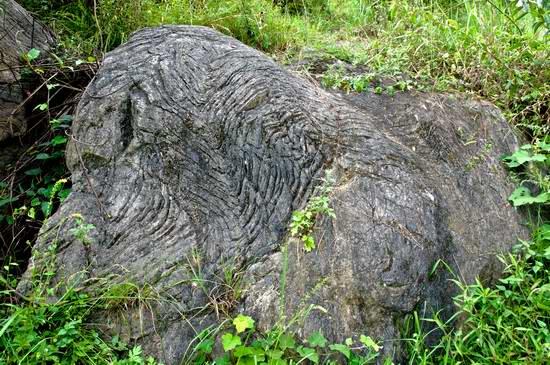 寒武系2统清虚洞组灰岩同生褶皱构造地质遗迹遗迹2.jpg