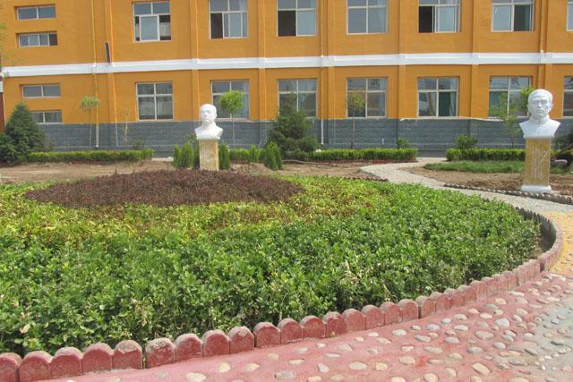 校园花坛一角