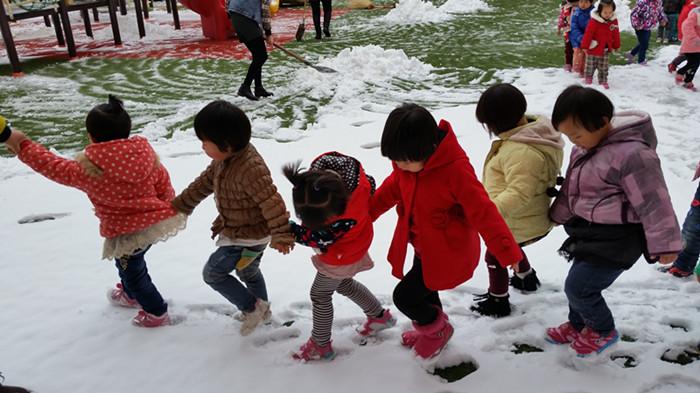 教育幼儿园组织户外玩雪活动