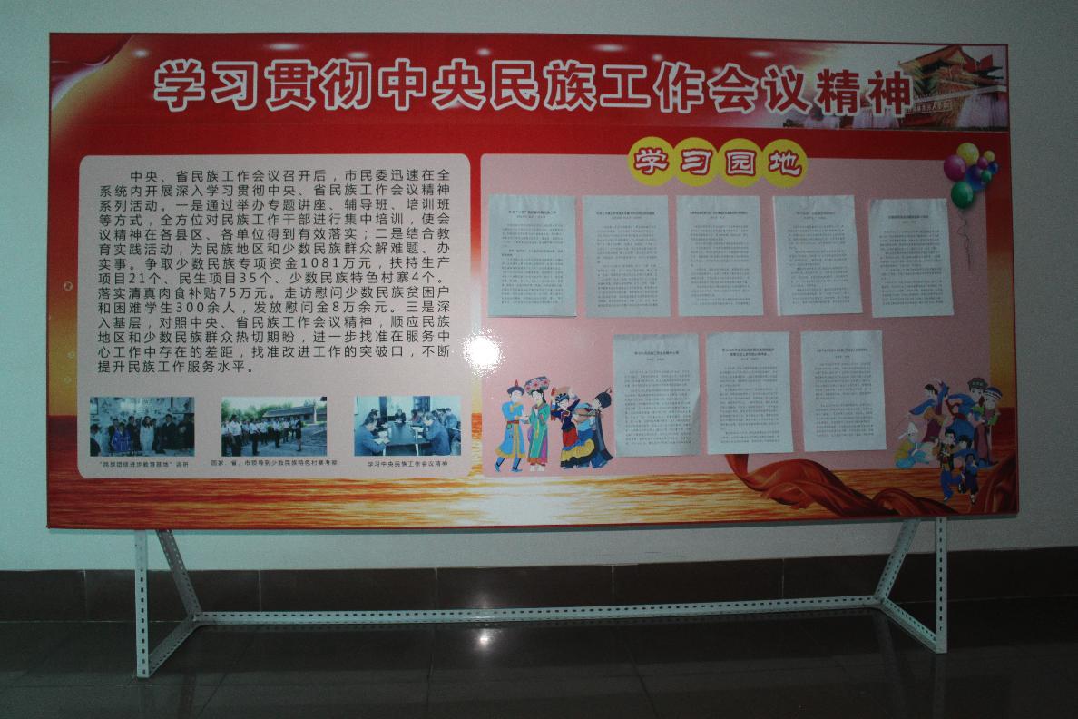 学习中央民族工作会议精神