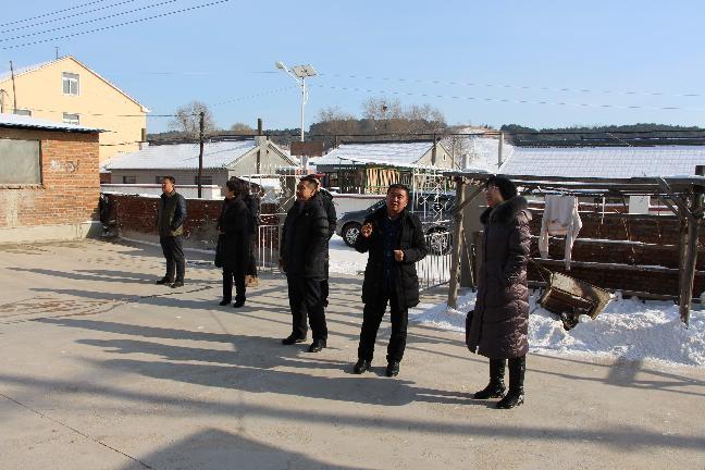 到顺城区四家子特色村寨进行项目审计