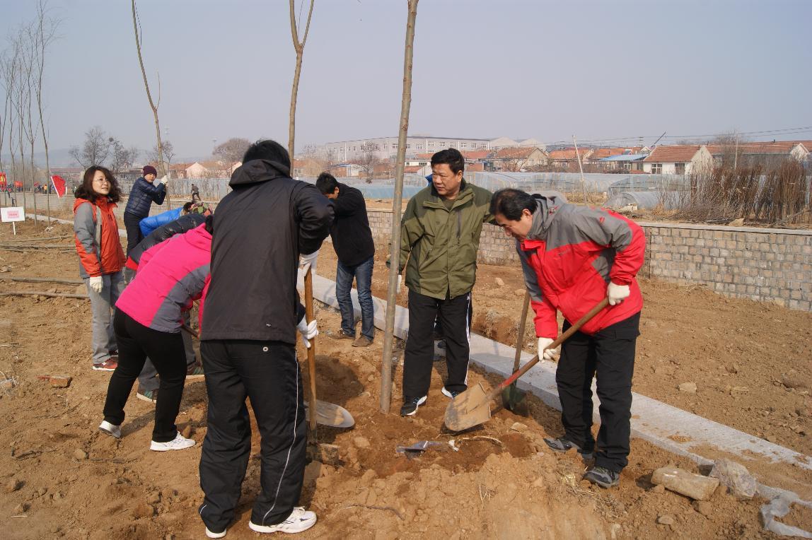 城阳区编委办全体人员参加义务植树活动