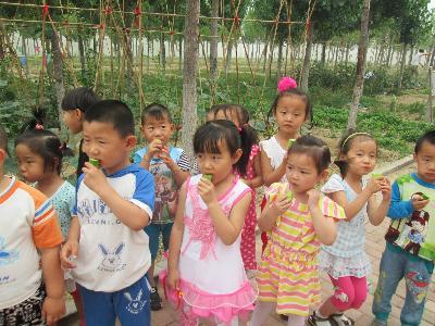 利津县北宋镇中心幼儿园