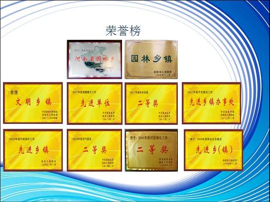 饭坡镇近年来荣誉