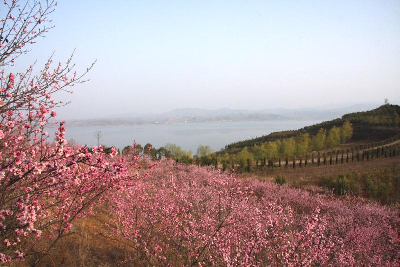 环湖一期生态园