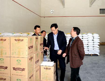 肖海副县长指导调研粮食工作