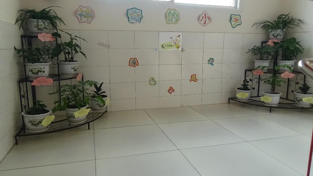 幼儿园植物角