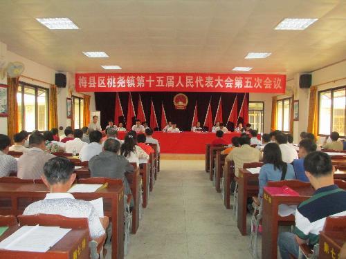 桃尧镇第十五届人民代表大会第五次会议