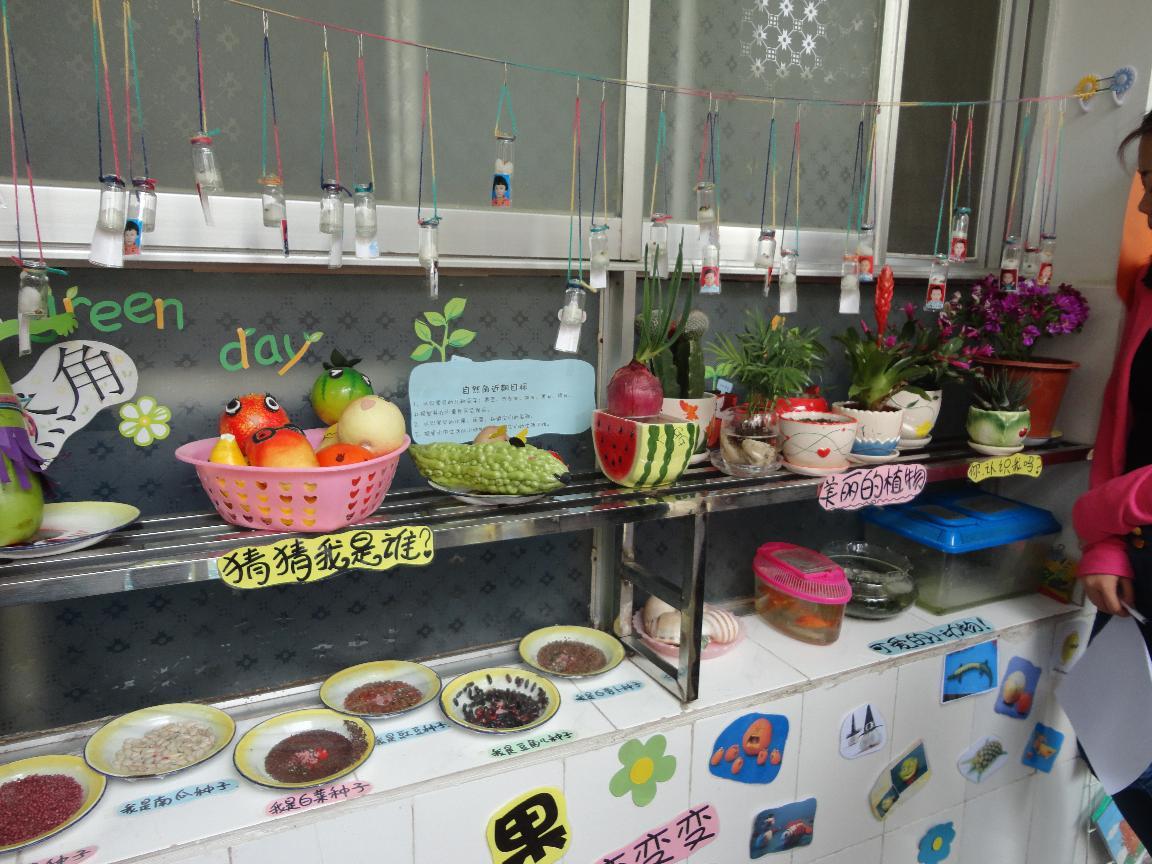 幼儿园大班以油桶为主题自然角装饰图片
