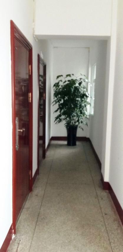 城建档案馆办公区域走廊