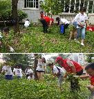 遵义市机构编制委员会办公室党支部开展义务除草活动美化净化社区环境