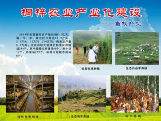 桐梓县四大产业之畜牧产业
