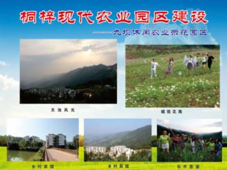 九坝休闲农业示范园