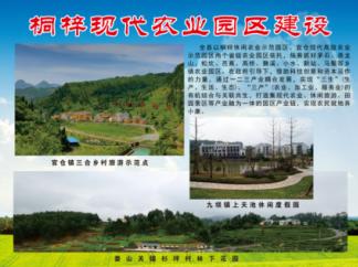 桐梓官仓现代高效农业示范园区建设1