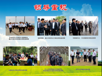 省市县领导重视四大产业发展