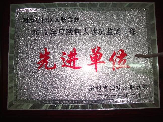 2013年取得的荣誉