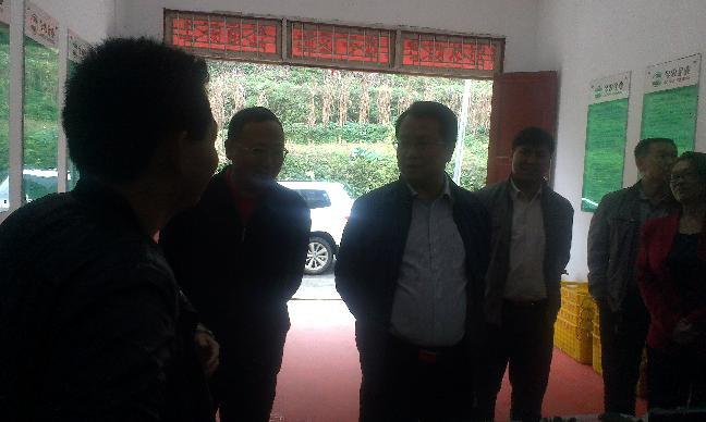 省残联杨云理事长来湄指导残疾人工作