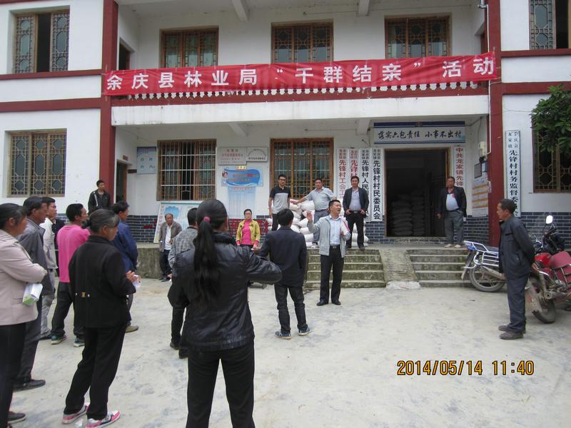 余庆县开展木材加工厂