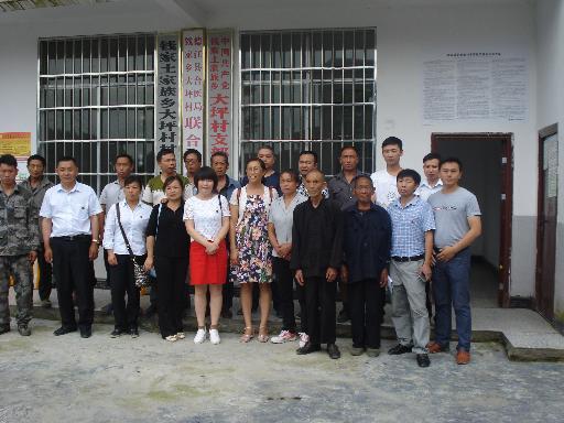县合医局与钱家乡大坪村联合党支部开展七一活动