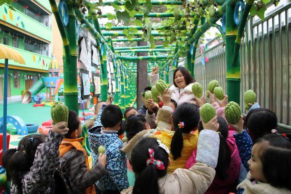 向阳路中心幼儿园植物园丰收了