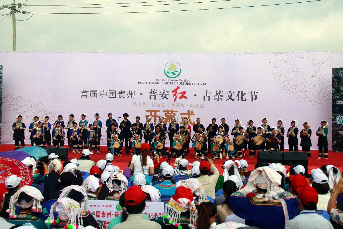 首届中国贵州普安红古茶文化节