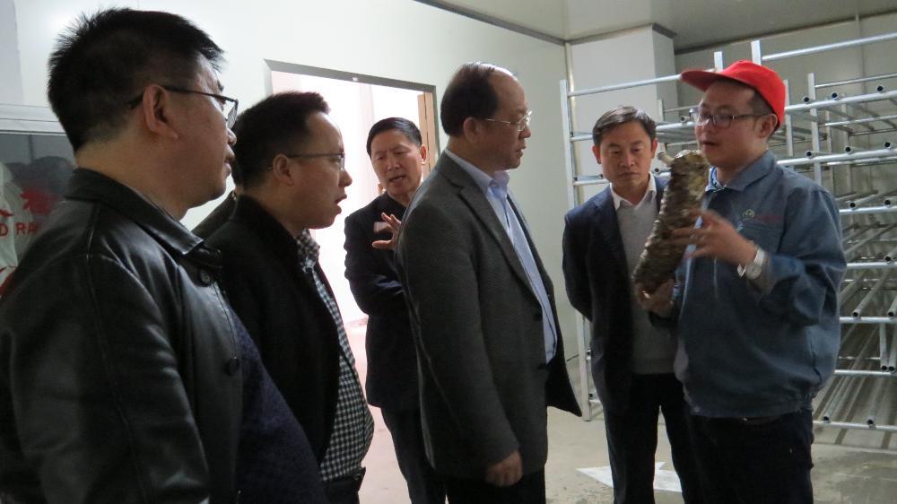 省政协副主席李汉宇到大方雪榕集体菌菇棒生产基地调研