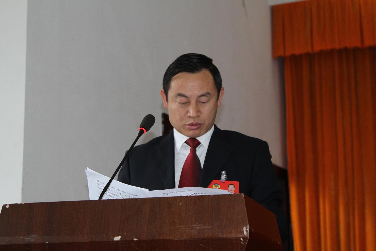 政协副主席陈亚林作提案工作报告