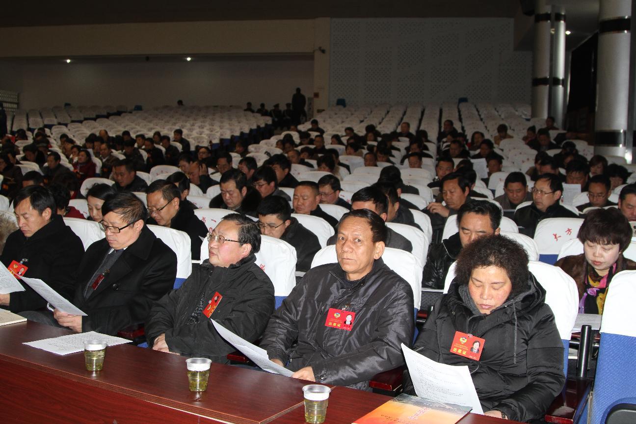 政协委员列席县人代会