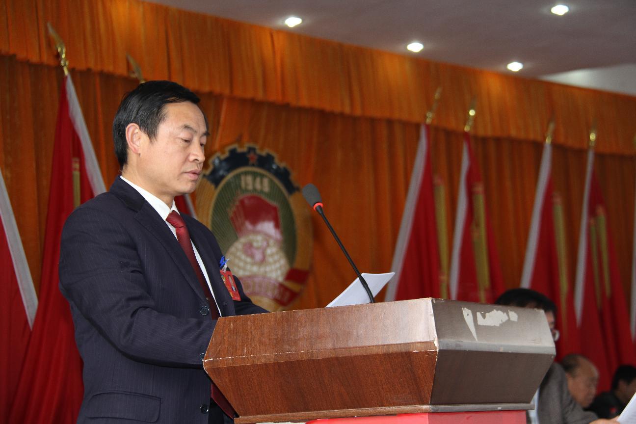 政协副主席陈亚林在九届五次会议上作提案工作报告
