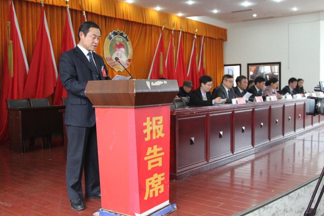陈亚林副主席在政协第十届一次会议上作九届常委会提案办理工作报告