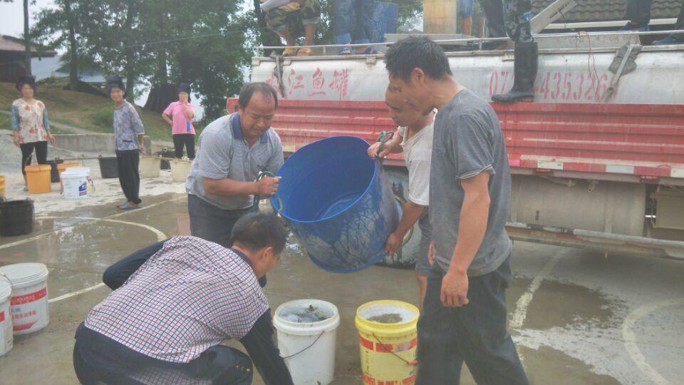 剑河县疾控中心深入责任帮扶村开展帮扶工作
