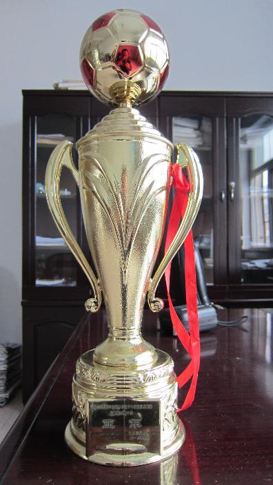 2013年度天水市校园足球联赛初中组亚军