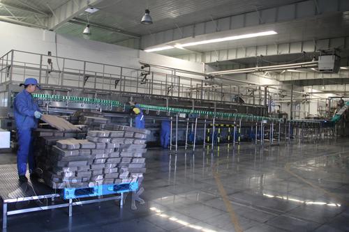 青岛啤酒武威有限责任公司年产8万千升易拉罐啤酒生产